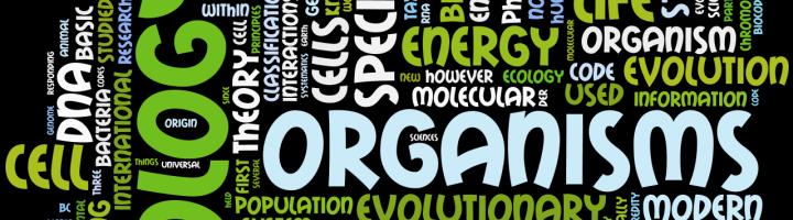 Pilihan Jurusan Kuliah untuk Kamu yang Suka Pelajaran Biologi