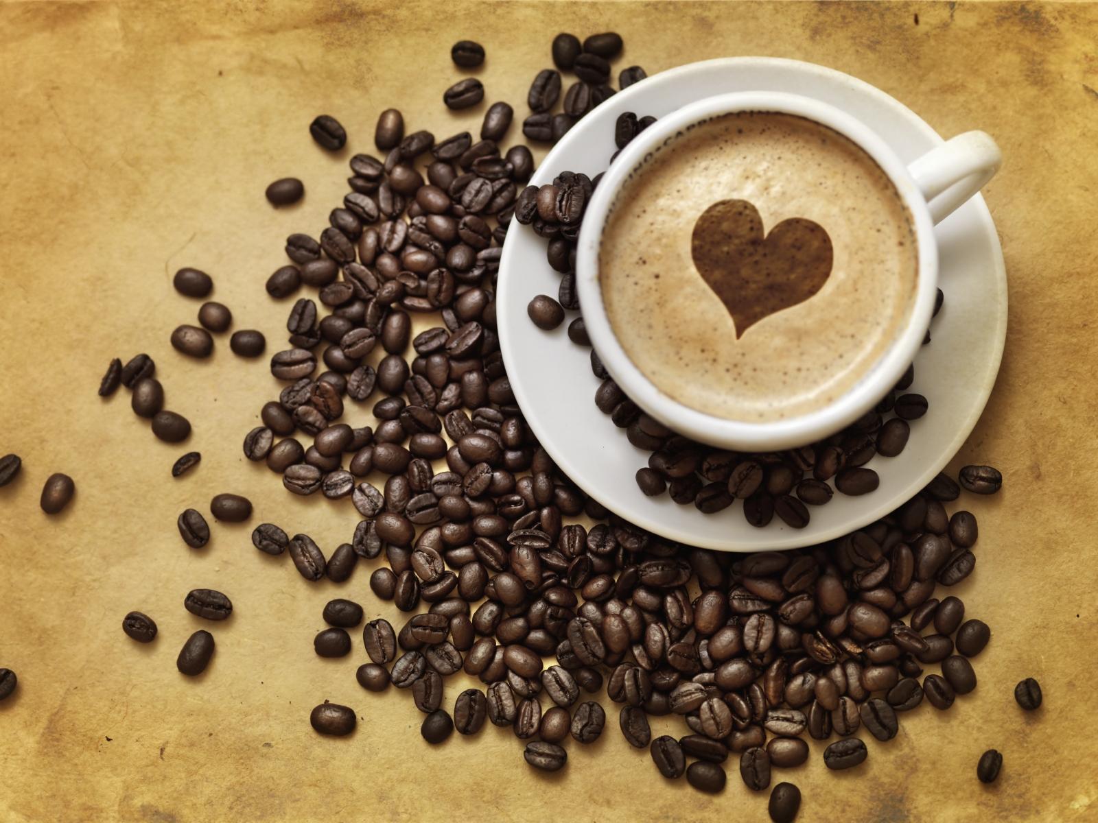 youthmanual - kopi