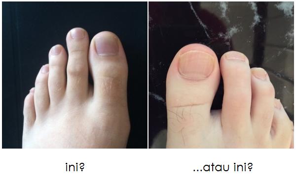 jari kaki