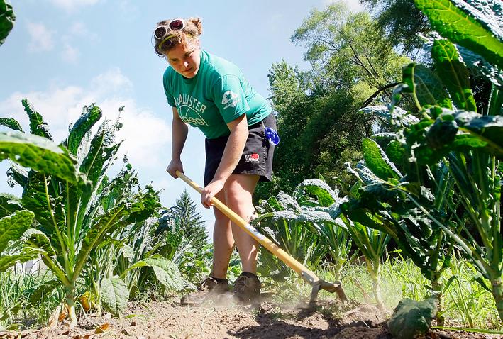 Kenalan Lebih Jauh Dengan Jurusan Kuliah Agribisnis Youthmanual