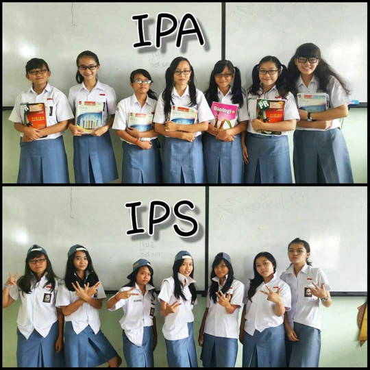 ipa vs ips